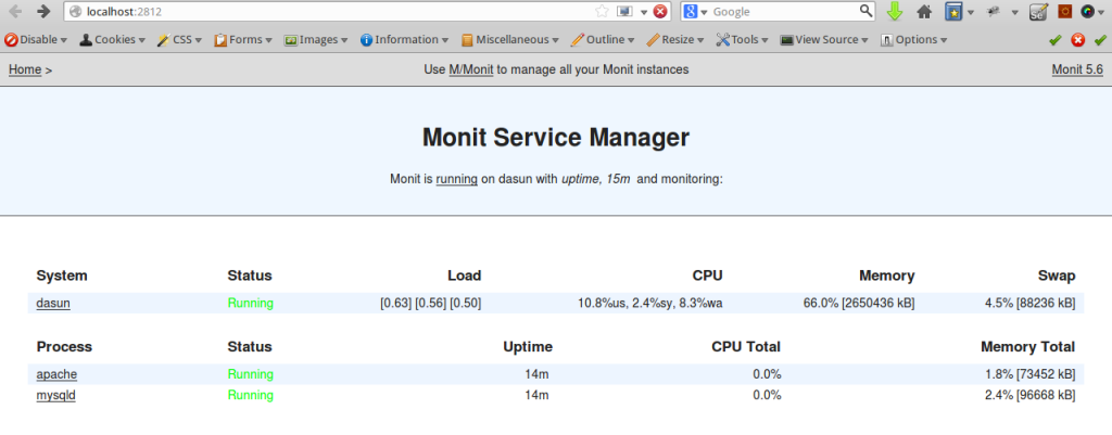 Monit Web Interface : http://localhost:2812