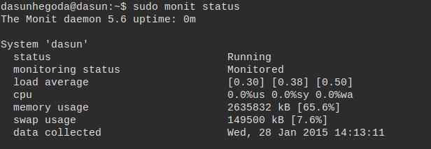 monit status